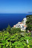 Riomaggiore Village, Cinque Terre, Italy — Stock Photo