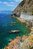 Via del Amore, Cinque Terre, Italy — Stock Photo