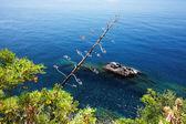 Via del Amore on the Ligurian Coast, Cinque Terre, Italy — Stock Photo