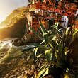 Sunset light over Riomaggiore Village, Cinque Terre, Italy — Stock Photo