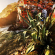 Sunset light over Riomaggiore Village, Cinque Terre, Italy — Stock Photo #25751389