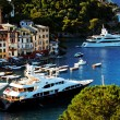 Boats in Portofino village, Ligurian Coast, Italy — Stock Photo