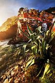 Günbatımı ışığı riomaggiore köyü, cinque terre, i̇talya — Stok fotoğraf