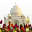 Stock Photo: White marble Taj Mahal in India, Agra, Uttar Pradesh