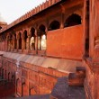 Architectural detail of JamMasjid Mosque, Old Delhi, India. — Stock Photo #25812777