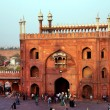 Architectural detail of Jama Masjid Mosque, Old Delhi, India — Stock Photo