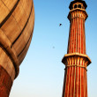 Architectural detail of JamMasjid Mosque, Old Delhi, India — Stock Photo #25814695
