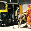 Street scene in Old Delhi, India, Asia — Stock Photo