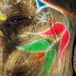 Painted elephant in Jaipur, Rajasthan, India — Stock Photo