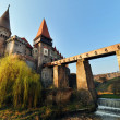 Huneazi Castle,Transylvania , Romania — Stock Photo