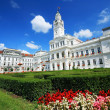 Arad Townhall, Romania — Stock Photo