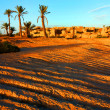 Stock Photo: Oasis in SaharDesert, Africa