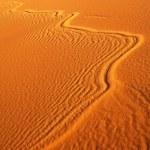 Moroccan desert dune background — Stock Photo #25888545