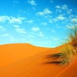 Moroccan desert dune background — Stock Photo #25888577