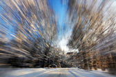 Blured forest road background — Stock Photo