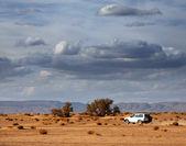 在沙漠中的车 — 图库照片