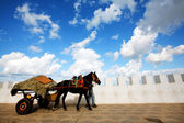 Cart pulled by horse in Asilah old medina, Morocco, Africa — Stock Photo