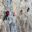 Climbing alpinists on Koenigsjodler route, Austria — Stockfoto