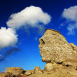 Romanian Sphinx, geological phenomenon formed through erosion — Stock Photo #25939857