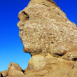 Romanian Sphinx, geological phenomenon formed through erosion in Bucegi Mountains — Stock Photo #25940227