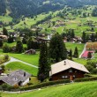 Grindelwald Village in Berner Oberland, Switzerland — Stock Photo