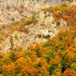 Mountain autumn landscape in Bucegi Mountains — Stock Photo
