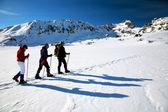 Alpinists traversing Bucura iced lake in National Park Retezat, Romania — Stock Photo