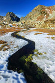 Mountain River in Retezat Mountains, Romania — Stock Photo