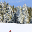 Winter alpine landscape — Stock Photo