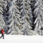 Winter alpine landscape — Stock Photo #26271381