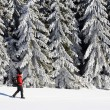 Foto Stock: Winter alpine landscape