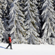 Stock Photo: Winter alpine landscape