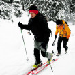 Ski touring in harsh winter conditions — Stock Photo
