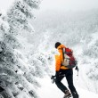Ski touring in harsh winter conditions - Stock Photo