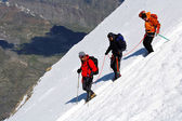 Team of alpinists descending an icy slope — Foto de Stock