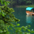 Stock Photo: Boat on Lake Bled