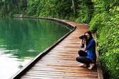 ブレッド湖、スロベニア、ヨーロッパ — ストック写真