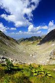 Alpi transilvaniche, romania — Foto Stock