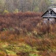 Old wooden farmhouse — Stock Photo