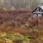 Old wooden farmhouse — Stock Photo