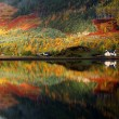 Autumn colours in Highlands — Stock Photo #39177261