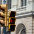 traffic light&quot — Stock Photo