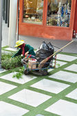 En man och dekorera träd i trädgården — Stockfoto