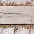 Grunge Wood antique panels for background — Stock Photo