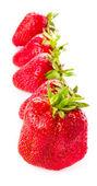 Frische reife Erdbeere isoliert auf weißem Hintergrund, Studio-Makro — Stockfoto