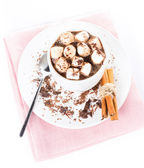 Hot dark chocolate with mini marshmallow and cinnamon in a whit — Stock Photo