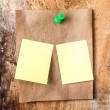 Brown Recycled paper sticky note With green Push Pin and small yellow sticky reminder. — Stock Photo