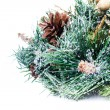 Christmas decoration with Fir branch Christmas and cones   on white background — Stock fotografie
