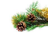 Tannen-Zweige und Zapfen mit Christbaumschmuck auf weißem Hintergrund — Stockfoto