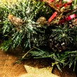 Christmas Bunch of Fir tree or pine branches and glowing star — Stock Photo